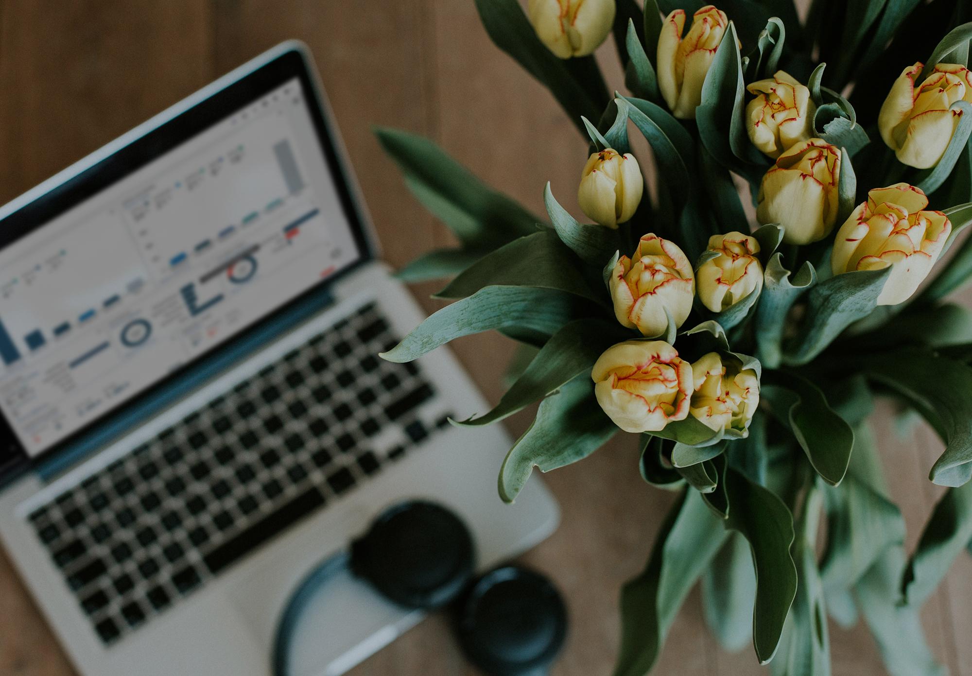 Flores el capiro y laptop
